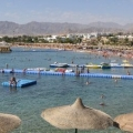 Акули бухта (шаркс бей) в шарм-ель-шейху, єгипет: готелі, на карті, оазис, пляжі, екскурсії »карта мандрівника