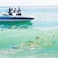 Міські пляжі турецьких курортів вмирають