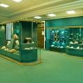 Музей природної історії татарстану
