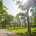 Парк кинського (kinsk ho zahrada)