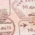 Рослини єгипту: назви і фото, лікарські, декоративні, квітучі, лікувальні »карта мандрівника