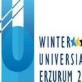 Туреччина витратила 54 мільйони лір на підготовку до зимової універсіади 2011