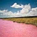 У австралії є рожеве озеро