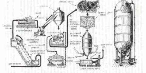 Виробництво целюлози